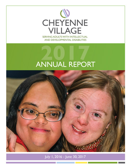 2017-cv-annual-report-web
